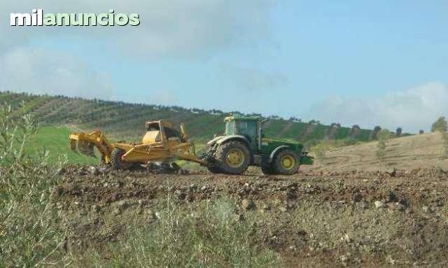 se busca representantes en marruecos - foto 1