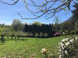 se busca Mantenimiento de jardín - foto