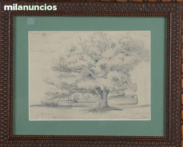 Dibujo de joaquÍn araujo - Árbol - foto 1