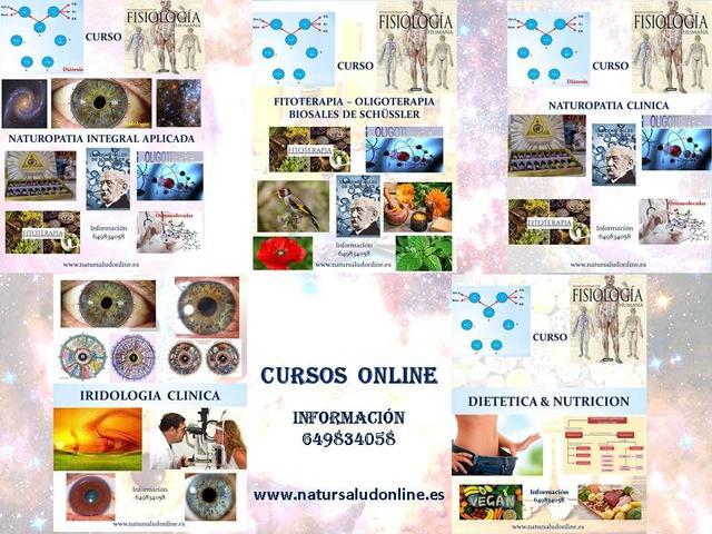 Cursos online - foto 1
