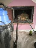 Mantenimiento chimeneas - foto