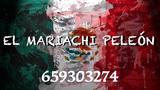 mariachi peleón ( las palmas ) - foto