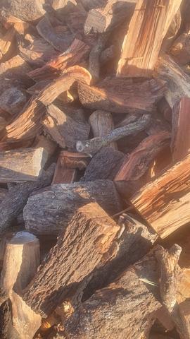 Almendro seco - foto 1