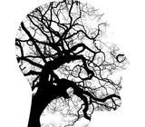 Psicoterapia en sant boi de llobregat - foto