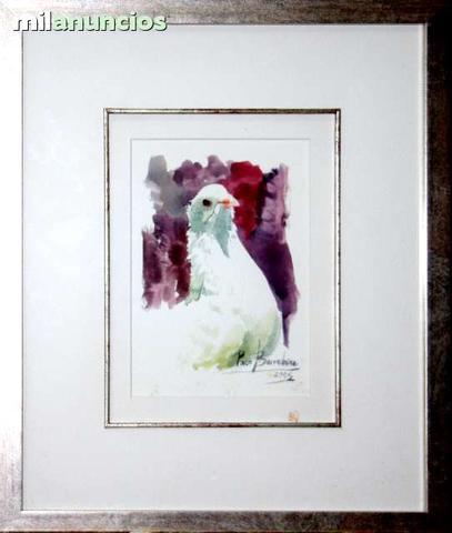 Francisco barrachina - cuadro paloma - foto 1