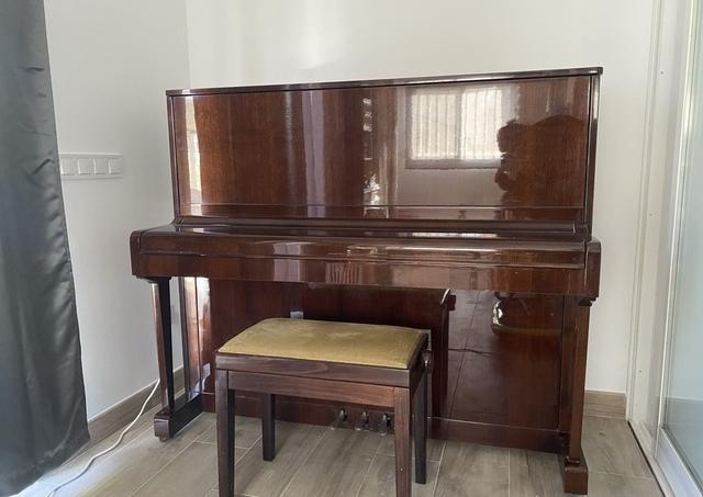Piano petrof - foto 1