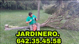 DESBROCES.  = JARDINERÍA = ASTURIAS.? - foto