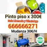 Pinto piso x 300euros / mudanza 30/h - foto