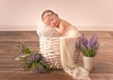 Emestudio - fotografía Newborn embarazo - foto