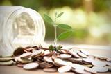 seguro de ahorro y jubilacion  - foto