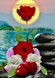 641463633 amarres amor eterno  - foto