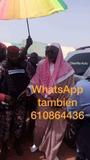 610864436 maestro baba vidente Africano  - foto