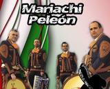 nuevo servicio de mariachis - foto