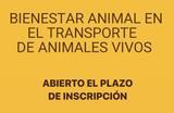 BIENESTAR ANIMAL TRANSPORTE ANIMALES