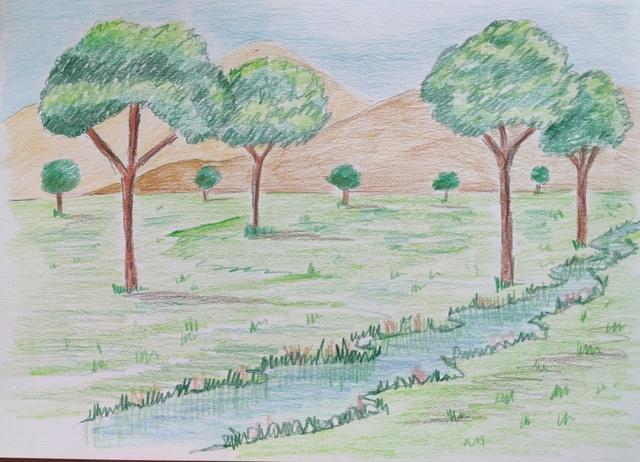 Curso de dibujo para niños - foto 1