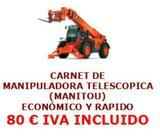 CURSO MANIPULADORA TELESCOPICA (MANITU)