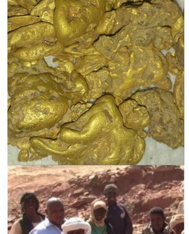 georadar oro plata cobre y piedras - foto 1