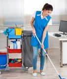 busco trabajo como limpiadora - foto