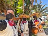 Mariachis mariachis mariachis  - foto
