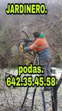 JARDINERO económico jose - foto