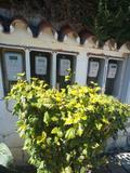 electricistas 24 horas Estepona - foto