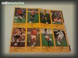 PEGATINAS CROMOS DIARIO AS 87-88