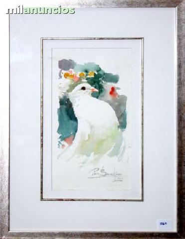 Paloma blanca de francisco barrachina - foto 1